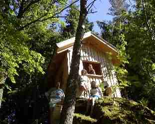Felsenhaus im Wald zu spielen