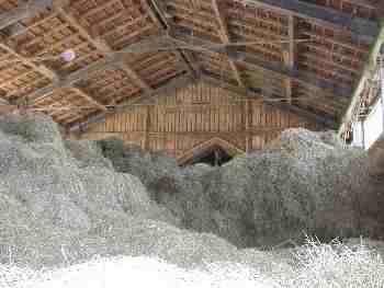 Ferien auf dem Bauernhof - Der Heustock auf dem Bauernhof