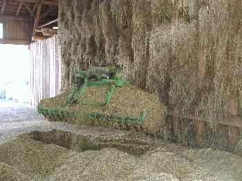 Mais Ernte Bilder - Mais mit dem Kran aufnehmen