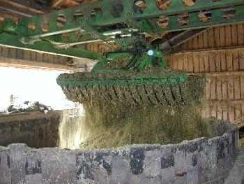 Greifer macht auf und Mais fällt ins Silo