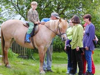 Reiturlaub auf dem Bauernhof Reiterferien in Bayern
