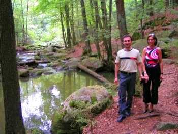 Romantischer Wanderweg im Höllbachtal - Aktivurlaub in Bayern