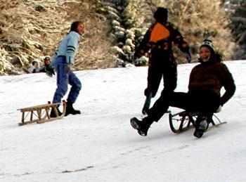 Winterferien auf dem Bauernhof - Schlitten fahren